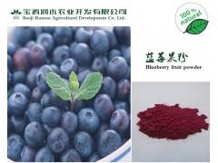 【喷雾干燥】纯天然蓝莓粉 1公斤起订