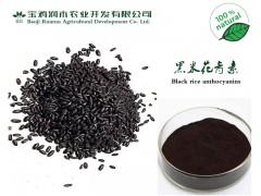 植物提取物厂大量供应《黑米花青素25% 花色苷》