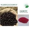 巴西莓提取物4:1 / 巴西莓粉/巴西莓果汁粉