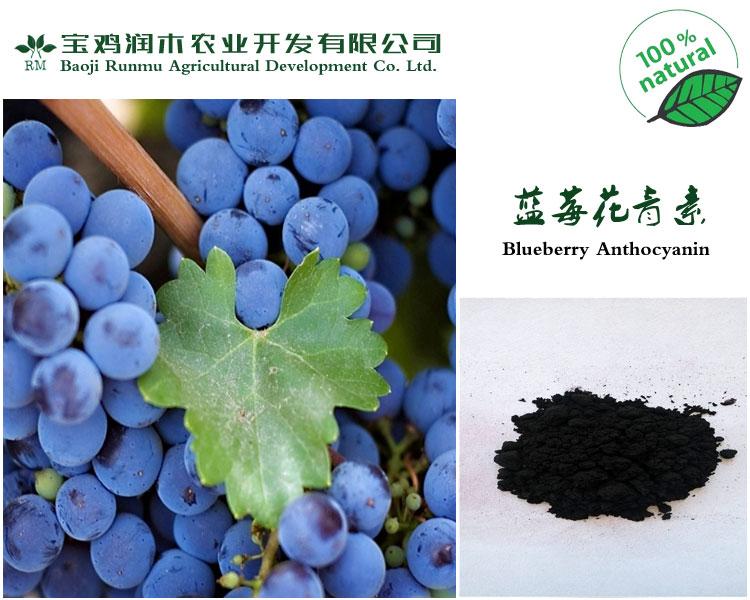 蓝莓花青素25% (欧标)