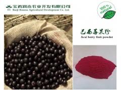 纯天然巴西莓粉 保健美白 水溶性好 食品级果粉 厂家直销