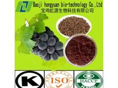 厂家直销 葡萄籽提取物95%OPC 质优