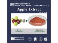 天然苹果提取物根皮素98%HPLC