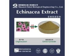 【厂家直销】天然 抗菌、抗病毒原料 紫锥菊提取物