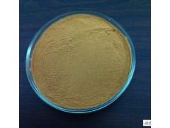 紫锥菊提取物菊苣酸2%提取物代加工
