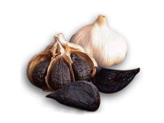 黑蒜提取物全国唯一生产商