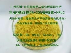 生姜提取物5%~20%姜辣素HPLC