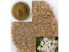 低含量蛇床子提取物 10%蛇床子素