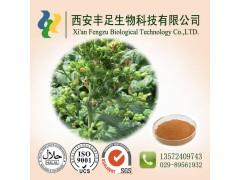 烟碱40% 植物农药 生物农药 西安厂家直销 大量现货包邮