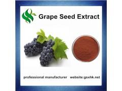 葡萄籽原花青素OPC95%