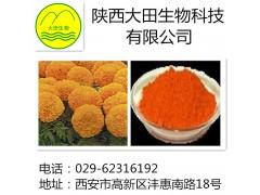 厂家现货供应叶黄素提取物