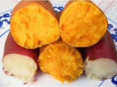 供应 红薯膳食纤维/减肥、瘦身 厂家暑期特卖!