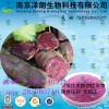 紫薯浓缩粉 工厂生产 代加工植物提取物