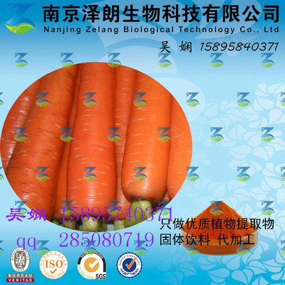 胡萝卜浓缩粉 工厂生产 代加工植物提取物