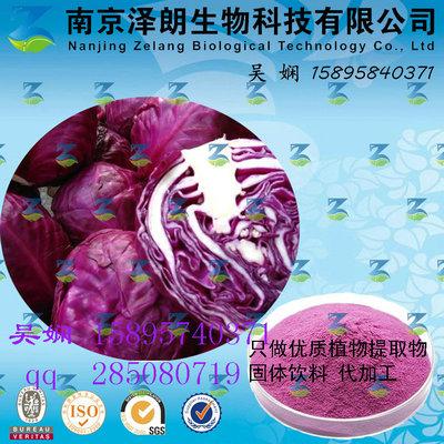 紫甘蓝浓缩粉 工厂生产 代加工植物提取物