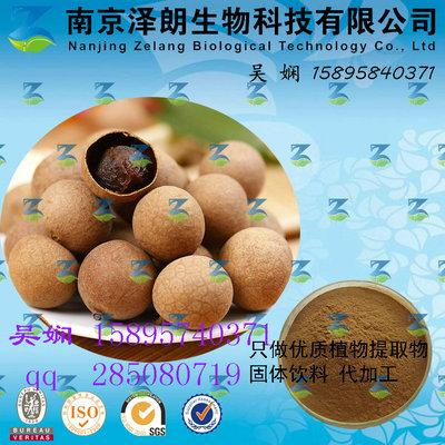 桂圆浓缩粉 工厂生产 代加工植物提取物