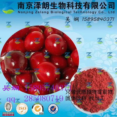 蔓越莓浓缩粉 工厂生产 代加工植物提取物