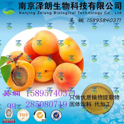 杏浓缩粉 工厂生产 代加工植物提取物