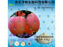 苹果浓缩粉 工厂生产 代加工植物提取物