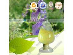 黄芩提取物(有现货)工厂生产 代加工植物提取物