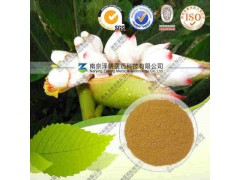高良姜提取物(有现货)工厂生产 代加工植物提取物