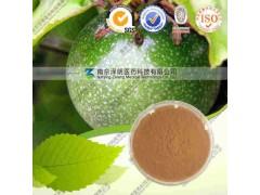 西番莲提取物 代加工植物提取物 南京泽朗