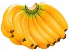 香蕉浓缩粉 工厂生产 代加工植物提取物