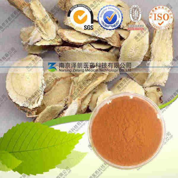 黄芪多糖 工厂生产 代加工植物提取物