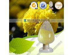 菊粉(有现货)工厂生产 代加工植物提取物
