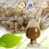 植物提取物哪家强 南京泽朗供应 金针菇浓缩粉