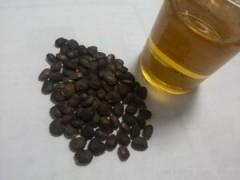 供应新资源食品 元宝枫籽油 神经酸5% 厂家直销