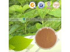 桑叶提取物(提取物)工厂生产 代加工植物提取物