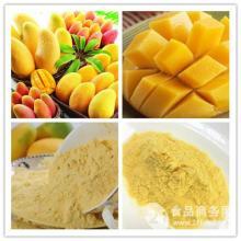 植物提取物生产商供应芒果浓缩粉   还可OEM代加工