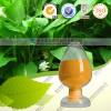 供应姜黄素 1-98% 高品质现货 厂家直销