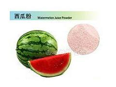 全国专业从事植物提取物生产 西瓜浓缩粉 OEM代加工
