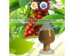 供应五味子乙素 1-98% 五味子提取物系列产品 厂家直销