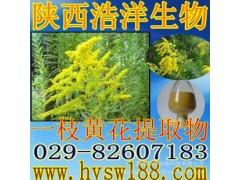 一枝黄花提取物