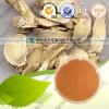 供应黄芪多糖 10-50% 黄芪系列提取物 厂家直销