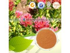 供应红景天提取物 红景天苷 1-98% 规格齐全 厂家直销