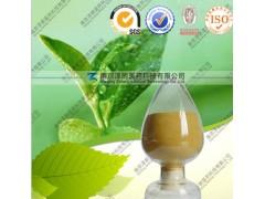 供应绿茶提取物 茶多酚 医药原料 厂家直销