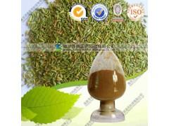 小茴香提取物 OEM加工 价格优惠 质量保证