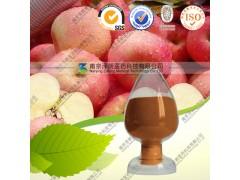 厂家供应苹果浓缩粉 苹果固体饮料OEM代加工