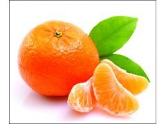 供应橘皮提取物 橘皮粉 QS厂家现货直销