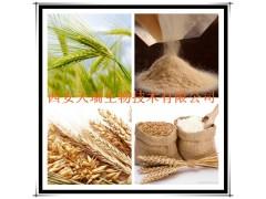 麦芽提取物 麦芽多糖 厂家大量现货