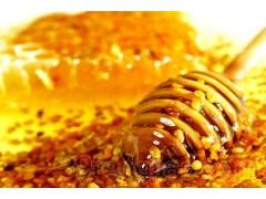 蜂胶提取物  蜂胶粉