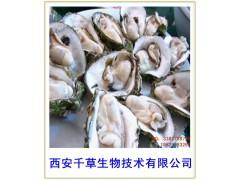 牡蛎肉纯粉西安千草生物现货直销