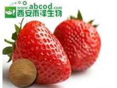 草莓浓缩粉生产厂家