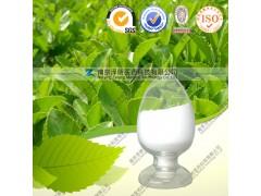 厂家直供  优质现货   原儿茶酸