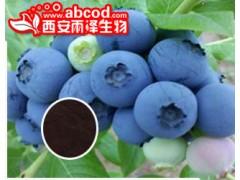 蓝莓浓缩粉生产厂家