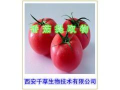 番茄提取物